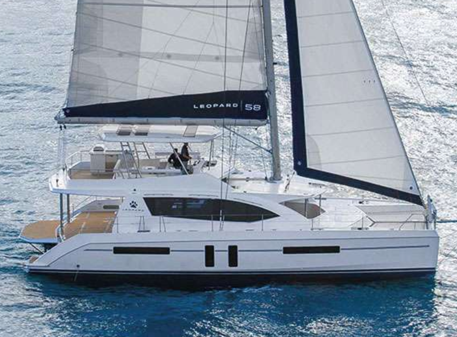 Robertson & Caine 58 Sold By Cat Expert Wiley Sharp
